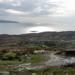 Beare Island