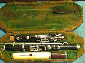 Ivory-Headed Flute