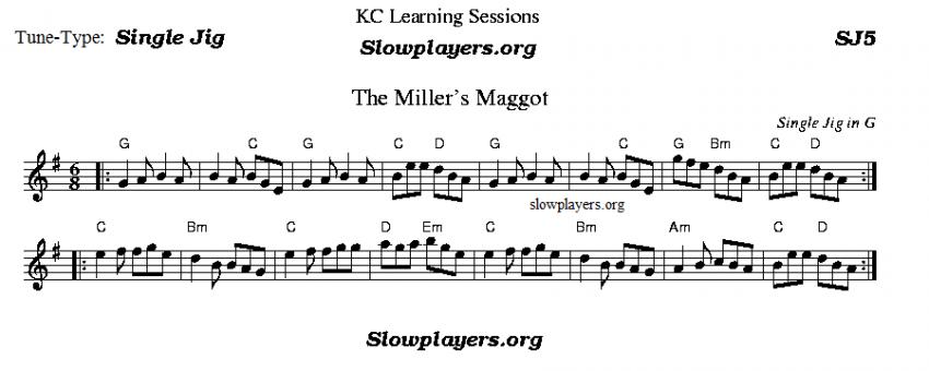 Miller's Maggot